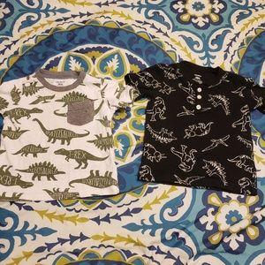Set of two dinosaur shirts